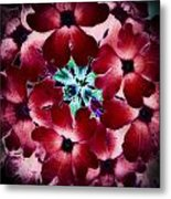 Soft Scarlet Floral Metal Print