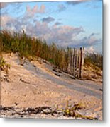 Solitude Metal Print by Sharon Myers