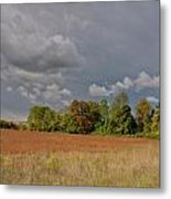 Somerset 3069 Metal Print