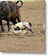 Sometimes The Bull Wins Metal Print