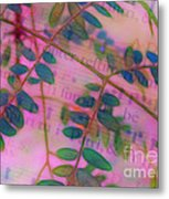Song Of The Honey Locust Metal Print by Judi Bagwell