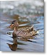 Song To The Siren Metal Print