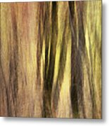 Sourwoods In Autumn Abstract Metal Print