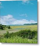 South Carolina Coastal Marsh Metal Print