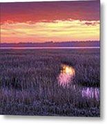 South Carolina Tidal Marshes Metal Print