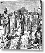 South: Cotton Planting Metal Print by Granger