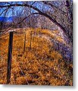 South Platte Fenceline Metal Print