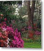 Southern Garden - Fs000148 Metal Print