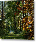 Southern Indiana Fall Colors Metal Print