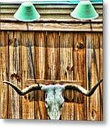 Southwestern Longhorn Skull Metal Print