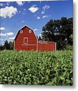 Soybean Field And Red Barn Near Anola Metal Print