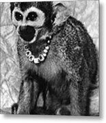 Space Monkey: Baker, 1979 Metal Print
