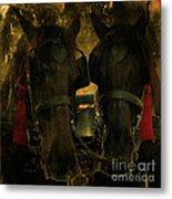 Spanish Carriage Horses Metal Print by Lee Dos Santos