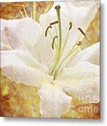 Sparkling Lily Metal Print