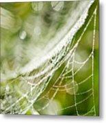 Sparkling Web Metal Print