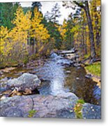Special Place In The Woods  Metal Print