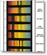 Spectra Chart, Blood Samples, 1894 Metal Print