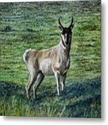 Speed Goat Metal Print