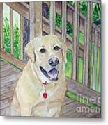 Spencer On Porch Metal Print