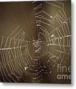Spider Web 1.0 Metal Print