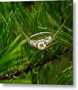 Spider Webs And Diamond Rings 10 Metal Print