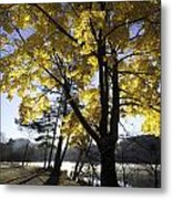 Spirit By The Lake Metal Print