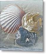 Spirit Of The Sea - Seashells And Surf Metal Print