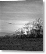 Spirit Trees Sparkle Metal Print
