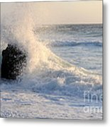 Splash 2 Metal Print by Catherine Lau