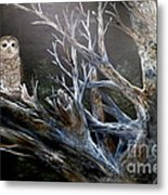Spotted Owl In Tree Metal Print