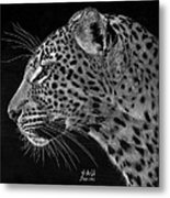 Spotted Solitude Metal Print by Sheryl Unwin