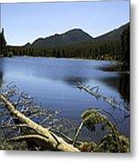 Sprague Lake Rocky Mountain National Park Metal Print