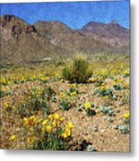 Spring Bloom Franklin Mountains Metal Print