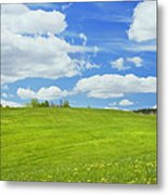 Spring Farm Landscape With Blue Sky In Maine Metal Print