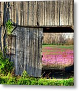 Spring In Kentucky Metal Print