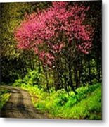 Spring Mountain Road Metal Print by Michael L Kimble