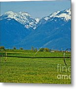 Spring On The Missions Metal Print