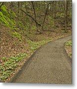 Spring Trail Scene 4 Metal Print