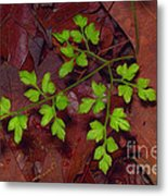 Spring Will Come Metal Print