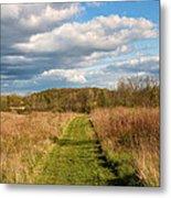 Spring's Mowed Path Metal Print