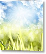 Springtime Metal Print by Les Cunliffe