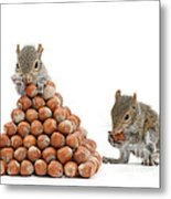 Squirrels And Nut Pyramid Metal Print