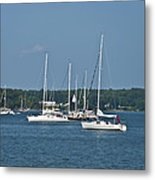 St. Mary's River Metal Print