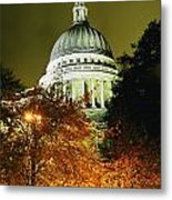 St Pauls Cathedral At Night With Trees Metal Print