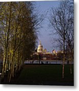 St Paul's With Silver Birches Metal Print