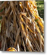 Stacked Stalks And Placed Pumpkin Metal Print