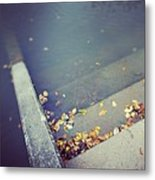 Stairs with autumn foliage leading into water Metal Print