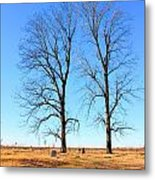 Standing Alone Together Metal Print