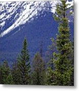 Standing At The Base Of Greatness Metal Print