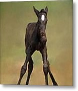 Standing On All Fours Metal Print